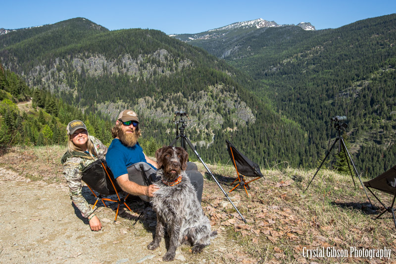 Rocky Mountain Griffons | Wirehaired Pointing Griffons